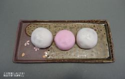 haiyusakuranagazara4.jpg