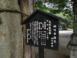 hakuijinjyakeyaki1.jpg