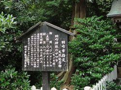 hakuijinjyasawara14.jpg