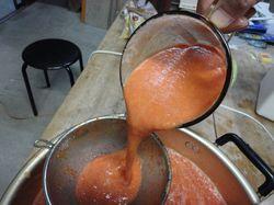 tomato.pyule4.jpg