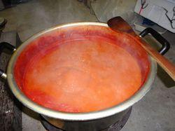 tomato.pyule7.jpg