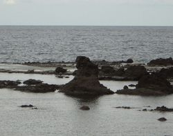 gojiraiwa.jpg