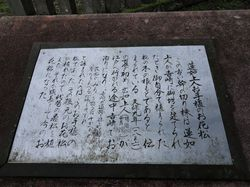 yosizaki13.jpg
